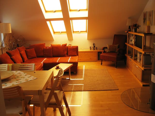 Beautiful 2-room apartment with chimney - Ilmenau - Daire