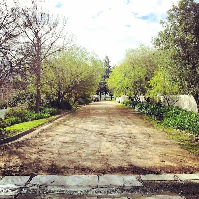 RURAL | Our immediate neighbourhood.