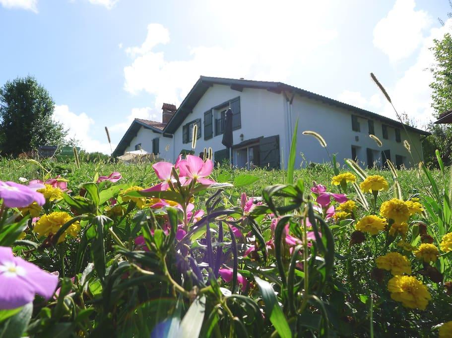 En casa rural con encanto. Recién reformada y con hermoso jardín...