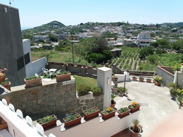 Vista della casa con giardino e area  barbecue