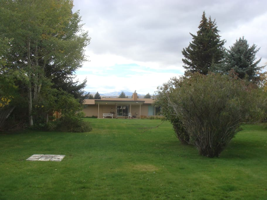 Back of the house, viewed from the back yard