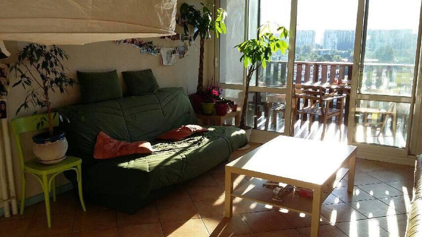 Chambre dans une colocation de 110m² - Grenoble - Wohnung