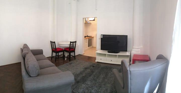 Cismigiu Park Studio