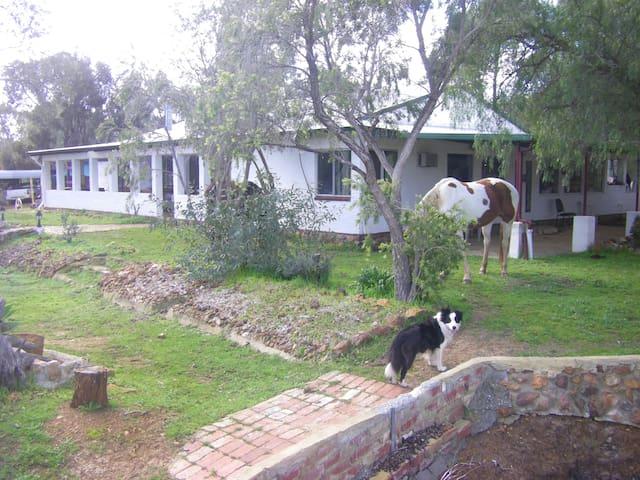 Room at quiet horse property