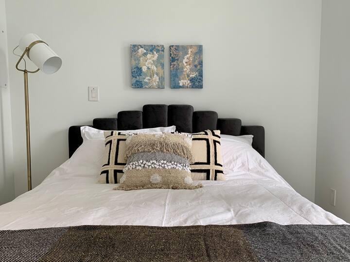 DT Brand New Luxury One Bedroom Free Parking