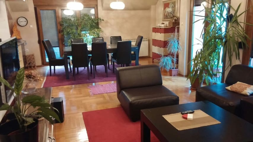 Very nice big  flat with park place - Banja Luka - Appartement