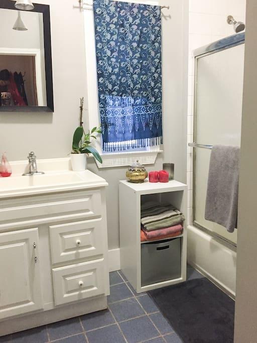 Bathroom, shower, sink, toilet
