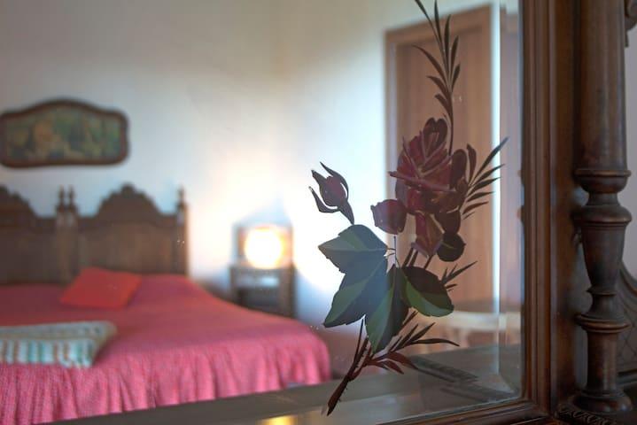 camera con vista - Mosso - Wikt i opierunek