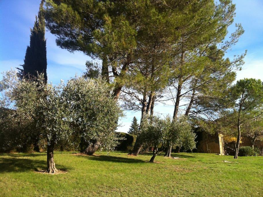 Uzes 5km mas 12 pers avec piscine maisons louer for Au petit jardin uzes
