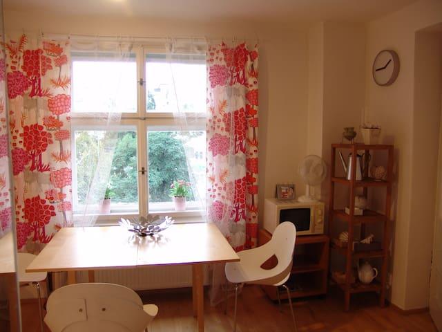 Prostorný apartmán s terasou