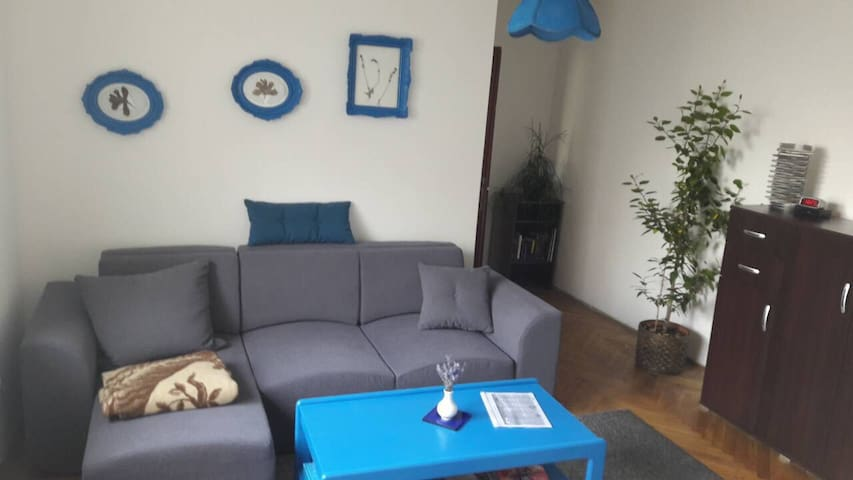 Lovely apartment in city centre