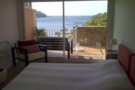 Pieds dans l'eau - Magnifique vue mer - Collioure