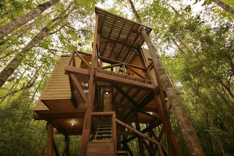 Treehouse: micro hut in Huilo Huilo