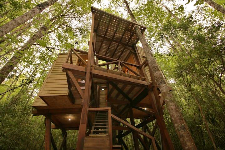 Casa árbol: micro cabaña en Huilo Huilo