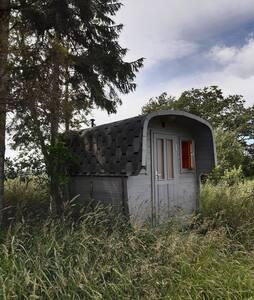 Уникальный домик в заповеднике на берегу реки
