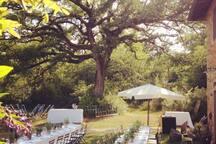 Wedding day at La Selva Giardino del Belvedere