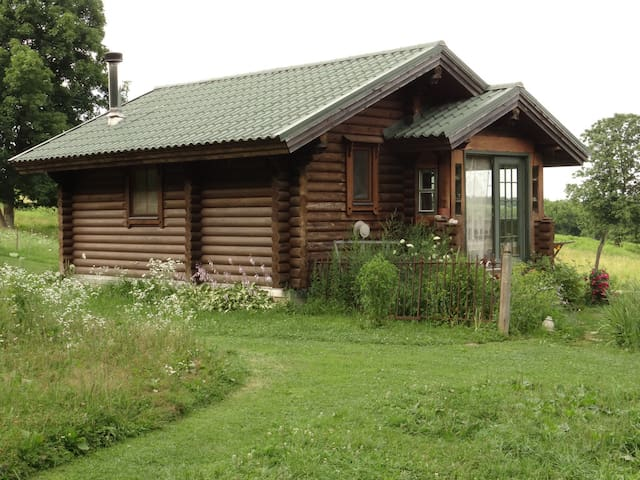 Karen's Tiny Log Cabin Home
