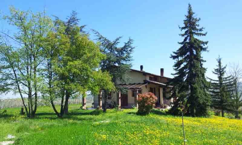 Casa Fernanda  In cima alla collina - Montecalvo Versiggia