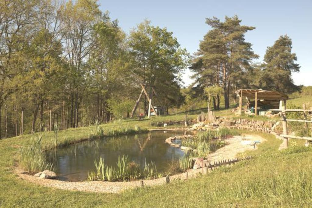 un bassin naturel pour se reposer, méditer, ... ou ...