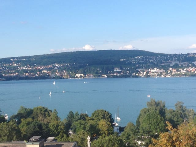 Living in a place with lake view  - Zurich - House