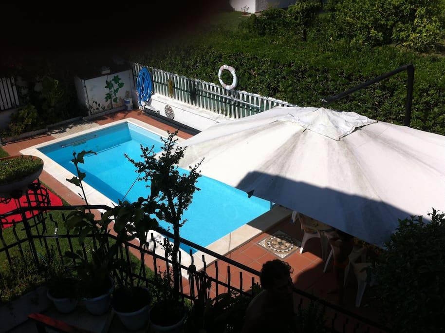 Villa con piscina vicino al mare ville in affitto a lido - Ville in affitto al mare con piscina ...