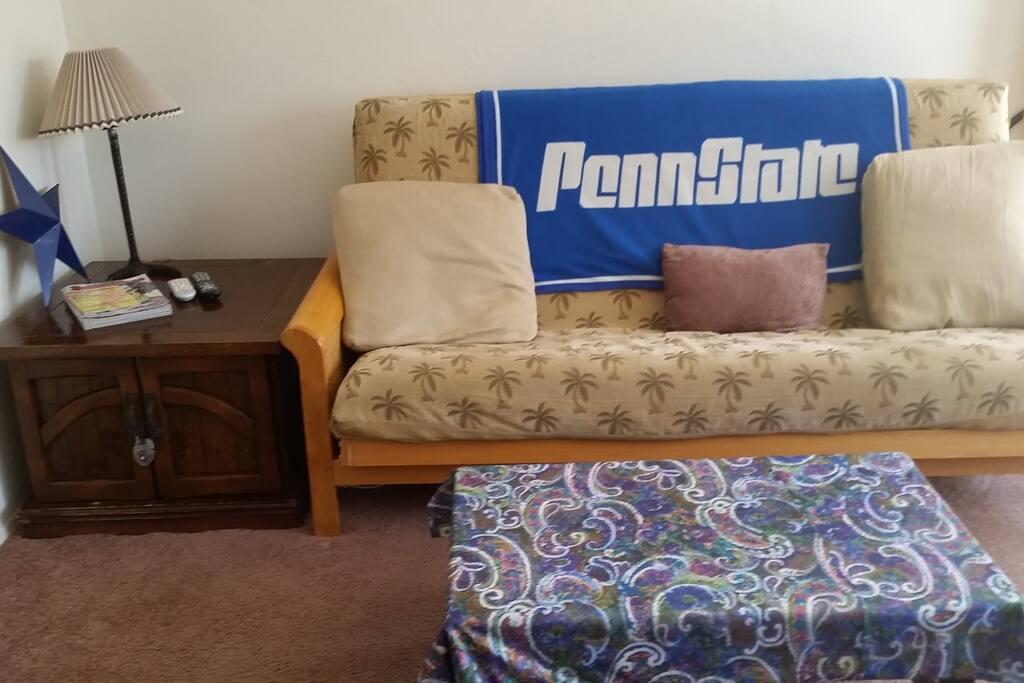 Twin size futon (sleeps 2)