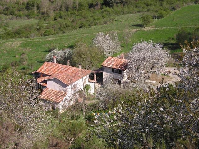 Cherry Tree House Casa dei Ciliegi