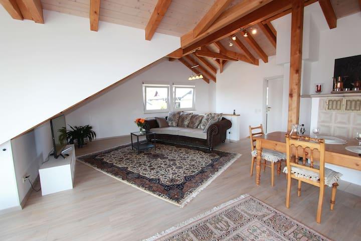 Ferienwohnung Häßler, (Radolfzell am Bodensee), Ferienwohnung im Dachgeschoss mit 120qm, 1 Schlafzimmer, max. 2 Personen