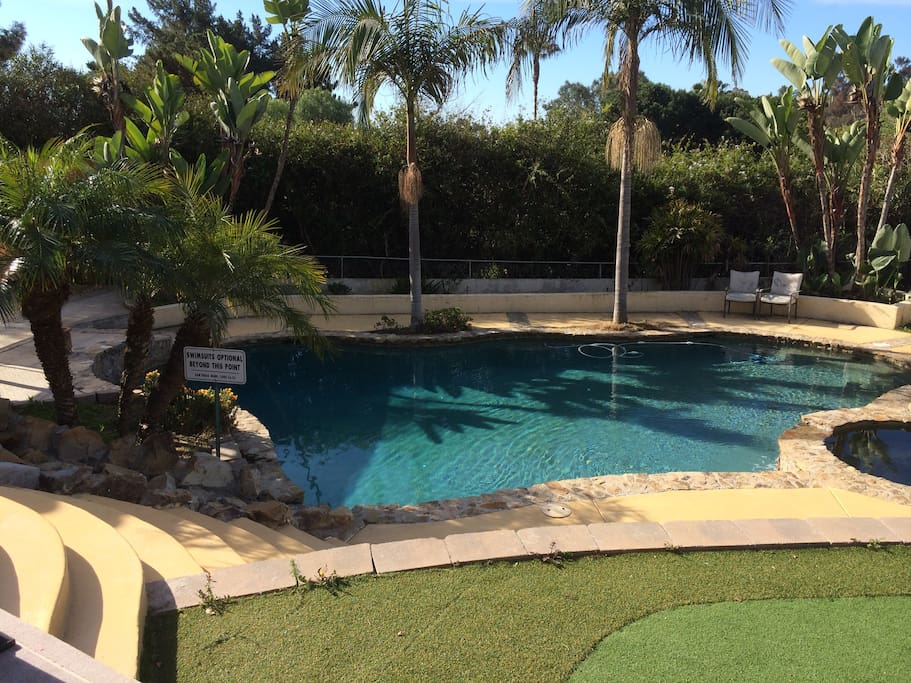 Enjoy the salt swimming pool and outdoor view