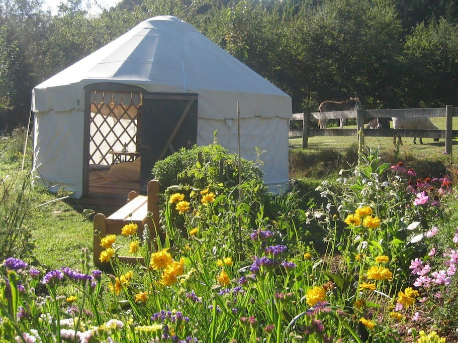 Garden yurt