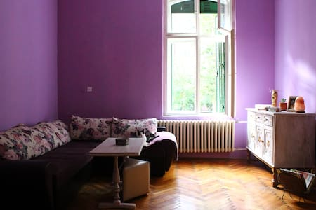 This is a nice and warm home...strict city centre. - Beograd - Leilighet