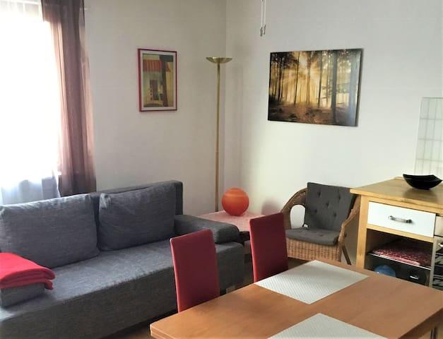 Ferienwohnung Alexander Feiss, (Schonach), Ferienwohnung, 45qm, Terrasse, 1 Schlafzimmer, max. 2 Personen