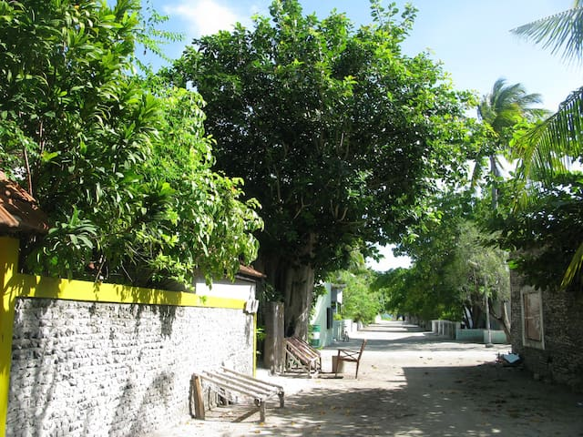 The street where the guest house is located