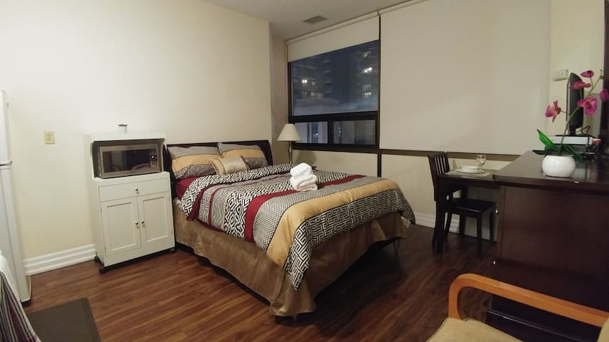 Furnished Bachelor near Bay & Bloor