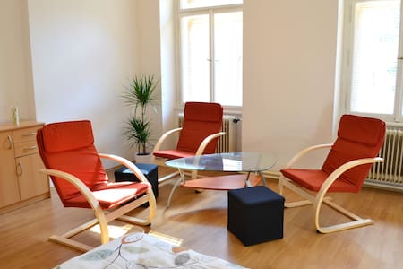 Spacious & Central apartment - Praga