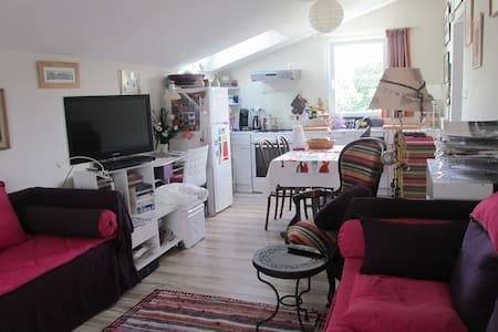 Charmant T2 à Quimper - Quimper - Wohnung