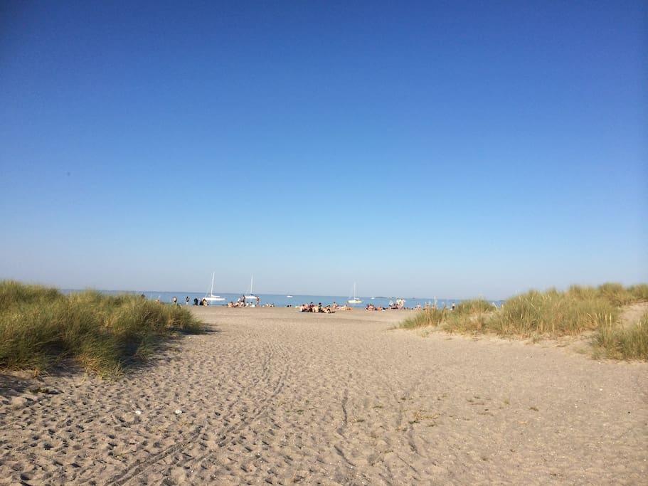 Copenhagen Beach Park just a five minutes walk away