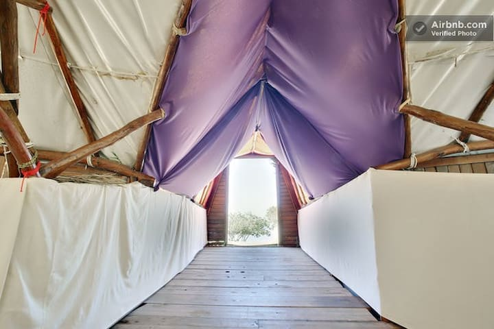 #16 INDOOR CAMPING TENT SPACE 2