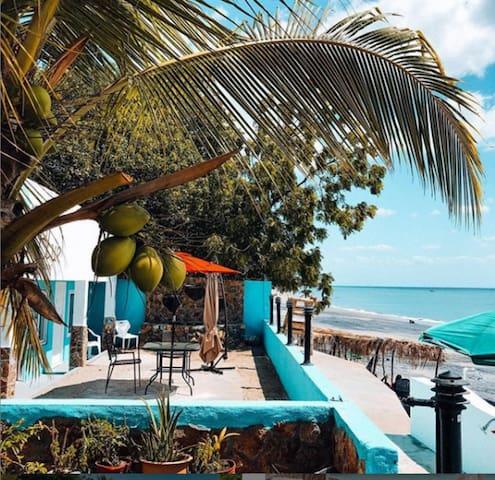Coconut Blue Panama - Jungle View Private Room