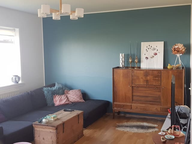 Modern home  in cute Reykjavik suburb-free wifi