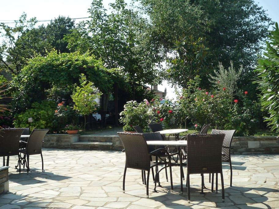 Our nice garden.