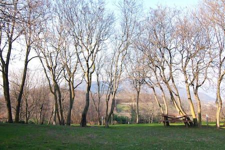 villa con piscina, lago d'iseo, - Torbiato - Huvila