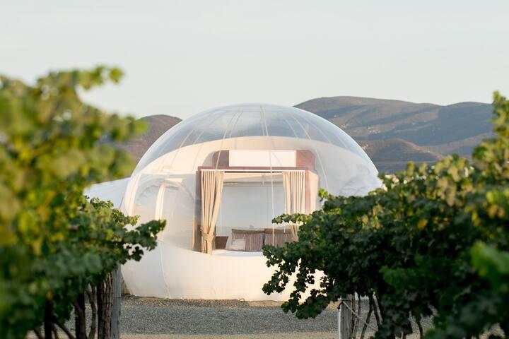 Bubble Room 5 (BATHROOM OUTSIDE) Campera Hotel
