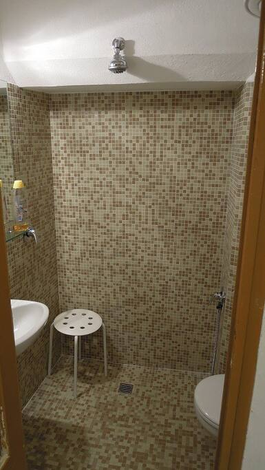 The bathroom with open shower and bidet spray