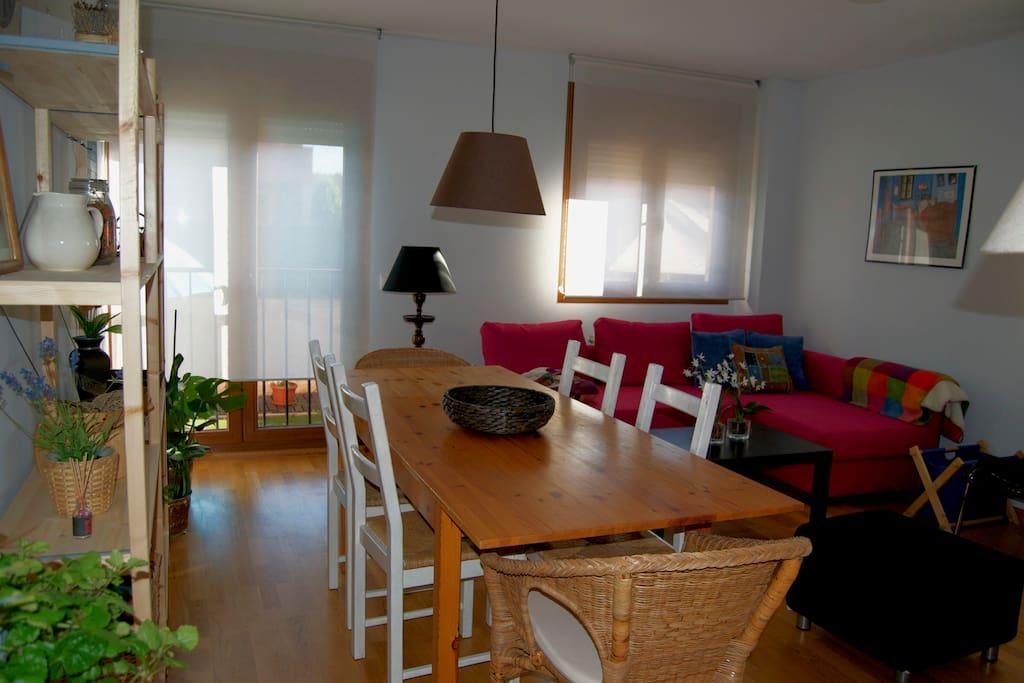 Stylish Living/Dining Room