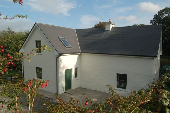 Connemara Artists Cottage - Maam - Cottage