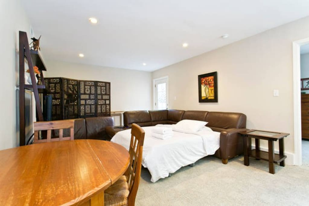 """Living room with queen sized pullout mattress and 42"""" TV."""