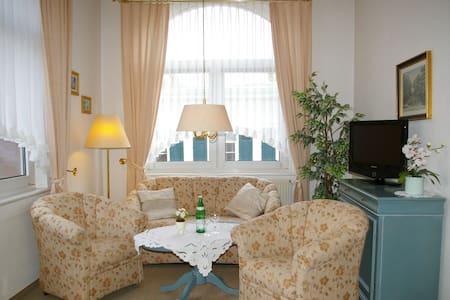 Bezahlbarer Luxus in historischem Altbau - Appartement