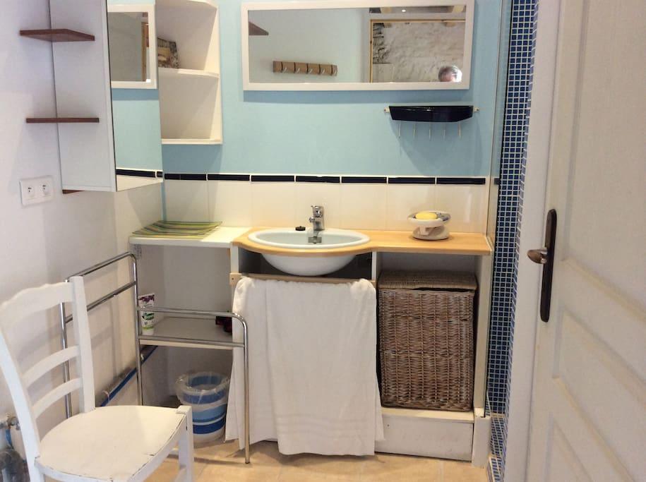 Salle d'eau avec machine à laver.
