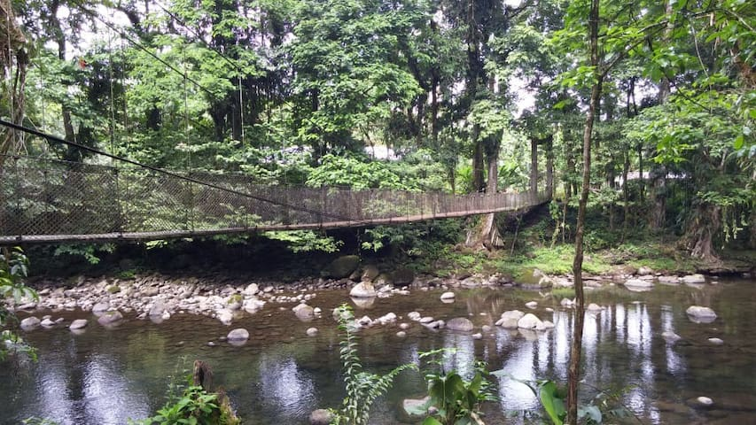 Backpacker Hostel - River and Rain Forest Paradise